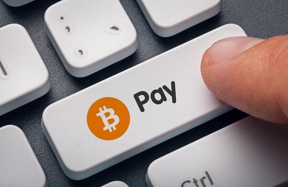 Grin-Bitcointalk-pago-acepta